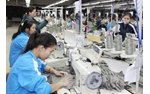 Chi nhánh Tập đoàn dệt may Việt Nam - Nhà máy sợi Vinatex Nam Định